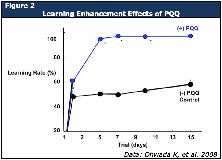 Learning Enhancement Effects of PQQ
